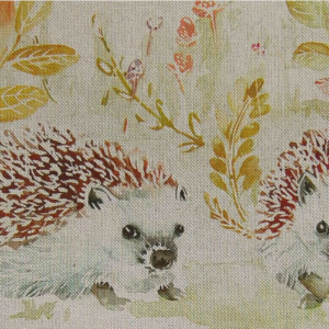 MR AND MRS HEDGEHOG